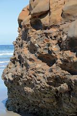 Conglomerate (zeesstof) Tags: zeesstof california sandiego vacationdestination vacation photographyassignment lajolla beach seafront scrippsbeach