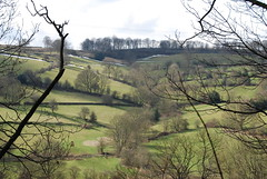 Remnants of the snow ... (Halliwell_Michael ## Offline mostlyl ##) Tags: brighouse westyorkshire nikond40x 2018 redbeckvalley hoveedge trees spring springtime baretrees landscapes snow