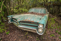 Came Upon A Clear (Wayne Stadler Photography) Tags: abandoned preserved junkyard georgia classic automotive derelict overgrown vehiclesrust rusty retro vintage oldcarcity rustographer rustography white