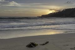 Tathra Beach, NSW 01 Apr 2018 (andybrooks29) Tags: sunrise canon canoneos5dmarkiv newsouthwales nsw beach tathra
