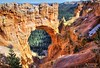 The Bryce Natural Bridge from Natural Bridge Overlook, Bryce Canyon (PhotosToArtByMike) Tags: brycenaturalbridge brycecanyonnationalpark hoodoos rockspires brycecanyon hoodoo sandstone formation utah ut bryce limestone erosion scenic canyon landscape naturalbridge naturalbridgeoverlook