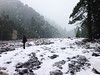 Snow Fall (sofiasamarah) Tags: review winters snow snowfall fall snowflakes snowing cold freezing frozen freeze hiking outdoors adventure trees tree forests forest sofia samarah photography