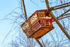 Deserted (jmhutnik) Tags: abandoned amusementpark westvirginia ride overgrown growth lakeshawnee