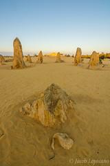The Pinnacles (JLoyacano) Tags: australia cervantes desert jacobloyacano nambung nambungnationalpark sunset thepinnacles wa westernaustralia landscape perth pinnacles pinnaclesdesert rock rocks sunrise