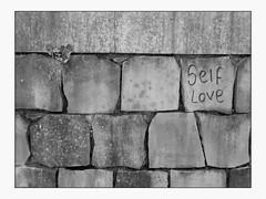 self love (vfrgk) Tags: art artistic minimal minimalism pattern nature urbannature wall walldetail ivy plant blackandwhite monochrome bnw bw love tags streetart urbanbeauty urbanart