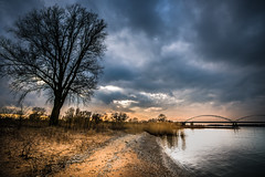 the tree (bjdewagenaar) Tags: photography photograph photographer photooftheday sony sonyalpha sonyphotographer sonyimages sonya77ii sonya sigma wideangle ultrawideangle sky clouds beach river merwede water waterscape bridge nature raw lightroom
