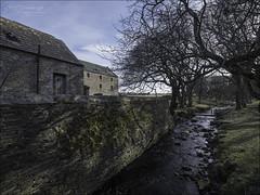 Castletown Mill (North Light) Tags: building decay ruin mill grainmill doublemill castletown burn stangergillburn caithness scotland