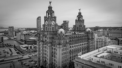 the liverbirds (paul hitchmough photography 2) Tags: liverbirds liverpool pierhead rivermersey architecture birds building paulhitchmoughphotography mavicair aerialphotography dronephotography drone dji tower sky city cityscape blackandwhite bw monochrome