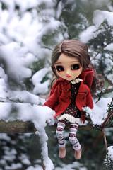 * Cold Winter * (.Corarock.) Tags: doll pullip blythe cute sweet obitsu