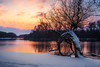 Winter sunset (Pásztor András) Tags: nature wintersnow cold sunset sun light clouds yellow orange white colors tree forest lake reflection snowfall yongnuo 35mm f2 dslr full frame nikon d700 andras pasztor photography 2018 hungary