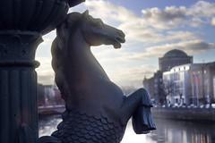 Grattan Bridge Dublin (hector =D) Tags: detalle esculturas hipocampo farolas grattanbridge río liffey dublín fourcourts sede tribunalsupremo irlanda ireland courts europa europe river dublin