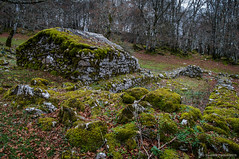 La majada del bosque (SantiMB.Photos) Tags: 2blog 2tumblr 2ig lizarraga andía urbasa navarra bosque forest ruinas ruins musgo moss geo:lat=4286818062 geo:lon=205420710 geotagged unanua españa esp