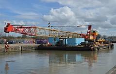 SWS Norfolk (6) @ KGV Lock 29-03-18 (AJBC_1) Tags: london england unitedkingdom uk ship boat vessel tug tugboat sws swalsh barge dlrblog ©ajc northwoolwich eastlondon newham londonboroughofnewham nikond3200 swsnorfolk ajbc1 pushertug inlandtug swalshsonsltd kinggeorgevlock kgvlock royaldocks londonsroyaldocks tilman cranebarge marineengineering
