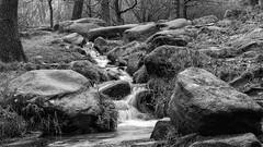 NB-7.jpg (neil.bulman) Tags: countryside longshawestate longexposure peakdistrict nature nationalpark derbyshire longshaw flowingwater rocky water flowing rocks derbyshiredalesdistrict england unitedkingdom gb