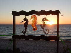 Three Little Seahorses (mikecogh) Tags: brighton publicart sculpture scuplturebythesea threelittleseahorses rack steel kristenwohlers trentmanning horizon sunset