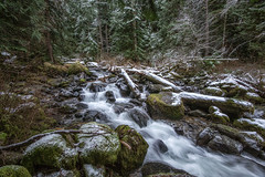 Quiet Places (writing with light 2422 (Not Pro)) Tags: mountrainiernationalpark creek falls waterfall washingtonstate rocks trees logs snow ice richborder landscape