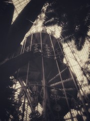 Iron Spiral (Corbicus Maximus) Tags: staircase spiral iron victorian palm house green glass tropical mono monochrome blackandwhite iphone 6s kew garden london richmond plant snapseed