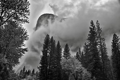 Storm Clouds Swirling Around El Capitan (Black & White) (thor_mark ) Tags: 3000feethighgranitemonolith 900meterhighgranitemonolith alongbanksofmercedriver blackwhite capturenx2edited cathedralbeachpicnicarea centralyosemitesierra clouds cloudsacrossyosemitevalley cloudsaroundmountains cloudsinvalley cloudsinyosemitevalley colorefexpro day7 elcapitan elcapitanhiddeninclouds evergreens hiddeninclouds hillsideoftrees landscape lookingnw lowclouds mountains mountainsindistance mountainsoffindistance mountainside nature nikond800e outside pacificranges portfolio project365 salathéwall sierranevada silverefexpro2 stormclouds totokonoolah trees triptopasoroblesandyosemite yosemitenationalpark yosemitevalley yosemiterittersierranevada california unitedstates