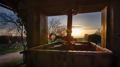 Barocke Holzkelter HDR.jpg (Knipser31405) Tags: 2018 edenkoben frühjahr pfalz