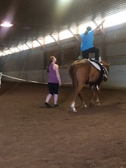 Equine Vaulting (Pictures by Ann) Tags: equinevaulting equine horse vaulting exercise phyed gymnastics dance fitness fun sophia physicaleducation