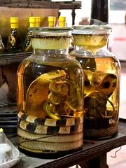 Cobra in a jar 0 Snake Wine for sale in Vietnam. (One more shot Rog) Tags: vietnam vietnamese cambodia mekong snake snakes snakewine caibe wines wine cobra cobrawine bite alcahol strong jars jar glass shopping unusual horrible taste mekongriver onemoreshotrog scorpion scorpionwine smakeandscorpionwine winetasting