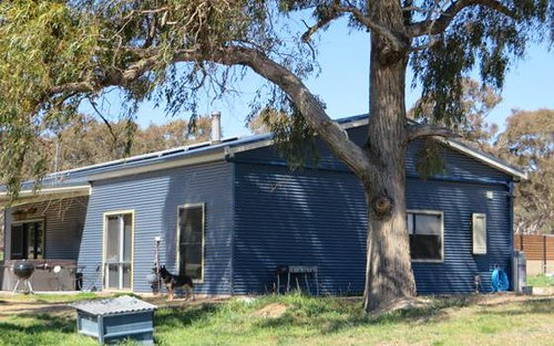 895 Polhill Road, Wellingrove NSW 2370
