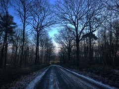 Ice road truckers (t.rutherford73) Tags: england roadtrip countrylife countryside woods iphone snow ice sunset sunrise onepointperspective landscapes landscape landscapephotography road silhouette trees