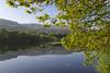 Llyn Tecwyn Isaf (Keartona) Tags: llyntecwynisaf llandecwyn lake water still goose calm tranquil tranquility morning landscape beautiful welsh wales north uk northwales harlech talsarnau brynbwbach spring may blue sky hills oak tree green