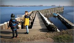 Tom et Noah face à la jetée du petit port de Veere, Walcheren, Zeelande, Nederland (claude lina) Tags: claudelina nederland hollande paysbas zeelande zeeland veere veersemeer