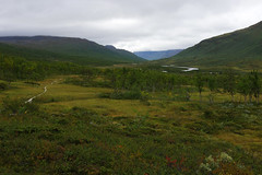 2015 / Day 3 / Hiking in Tarradalen valley (Gregor  Samsa) Tags: sweden sverige north deepnorth lapland lappi lappland sápmi sapmi sarek nationalpark september autumn fall hike hiking trek trekking track tracking backpacking wandering adventure outdoors outdoor journey trip exploration path footpath trail mountains grass nature scenery scenic