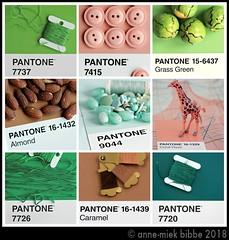 9X PANTONE 12 (Anne-Miek Bibbe) Tags: pantone kleuren colors farben colori colores cores canoneos700d canoneosrebelt5idslr annemiekbibbe bibbe nederland 2018