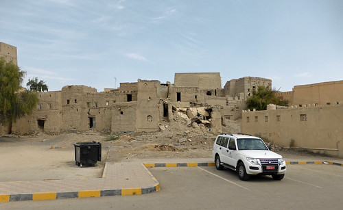 Dahla Fort (3)