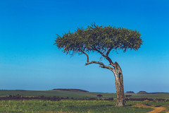 Kenya (Jakko Photo) Tags: 2017 africa scenery
