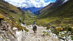 Travessia Salkantay, de Cusco a Machu Picchu, Peru