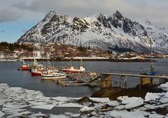 Fisherman's boats (Dalis.V) Tags: boats pier norway lapland lofoten winter see