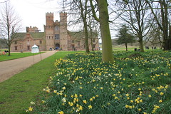 Oxburgh Hall from the gardens (jpotto) Tags: uk norfolk nationaltrust manorhouse architecture building daffodils flowers oxburghhall