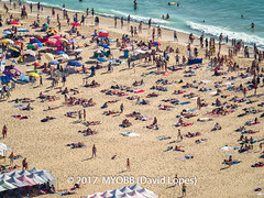 Portugal 2017-9021010-2 (myobb (David Lopes)) Tags: 2017 adobestock allrightsreserved atlanticocean europe nazare portugal aerialview beach beachumbrella copyrighted day daylight enjoyment highangleview leisureactivity ocean outdoors sand sea sunbathing tourism touristattraction traveldestination umbrella vacation watersedge ©2017davidlopes