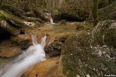 Petite cascade en Aval du ruisseau de Vergetolle - Châteauvieux-Les-Fossés (francky25) Tags: petite cascade en aval du ruisseau de vergetolle châteauvieuxlesfossés vallée la loue franchecomté doubs tuf