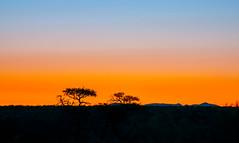 Sunset South Namibia (leonoos) Tags: sunset namibia orange coth coth5