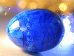 blue easter egg (photos4dreams) Tags: egg easter easteregg oster ei osterei photos4dreams p4d photos4dreamz happyeaster 2018