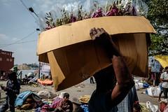 (Jpierrel) Tags: ixt fuji fujifilm xt1 inde india flowermarket calcutta kolkata xf1855mmf284