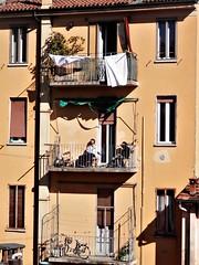 Primo sole (magellano) Tags: bologna italia italy via centotrecento palazzo building terrazzo balcone balcony persone people candid sole sun primavera spring facciata facade bicicletta bike