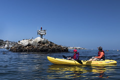 Monterey Bay Ocean Kayaking (Presidio of Monterey: DLIFLC & USAG) Tags: montereybaymarinesanctuary montereybay montereykayaking oceankayaking presidioofmonterey dli defenselanguageinstitute fmwr imcom armymwr outdoorrecreation adventure