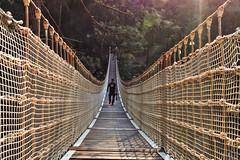 Lonely man (cengizskpl) Tags: turkey adana kapıkayakanyonu kanyon köprü kapıkayacanyon canyon bridge tree man people drawbridge light rope nikon7200