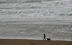 Scarborough (johnbray69) Tags: scarborough yorkshire coast coastline seaside sea england uk