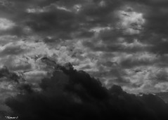 Looming Storm Clouds (that_damn_duck) Tags: blackwhite clouds cloud stormclouds storm nature bw blackandwhite