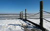 Wadden Sea on Ice (De Hollena) Tags: denhelder eis frost holland ijs ice lespaysbas nederland niederlande noordholland noordzee nordholland nordsee thenetherlands waddeensea waddenzee watt wattenmeer winter