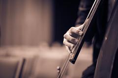 groove-technician (Nathaniel Macrae) Tags: iamnikon nikon nikond750 nikonphotography nikontop nikonusa nikonuk nikoneurope nikoncamera nikonitalia nikonflickr nikkor 85mm doublebass bass music musician concert musicconcert splittone