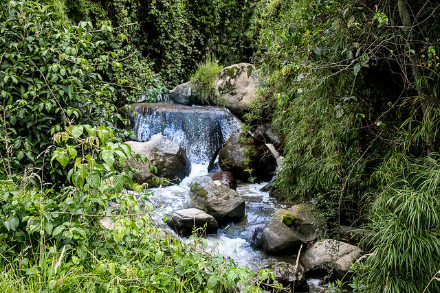 Quebrada Fucha