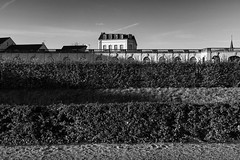 Nothing is what it seems (gambajo) Tags: 1year1town1lens brühl blackandwhite blackwhite black white bw project outdoors public castle schlosspark schloesser augustusburg architecture layers x100s fujix100s fujifilmx100s park old